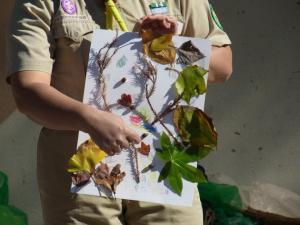 ビーバー木の葉アート